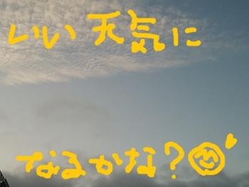 IMG_20170903_053658.jpg