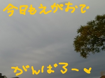 IMG_20171108_071005.jpg