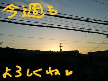 IMG_20171204_065222.jpg