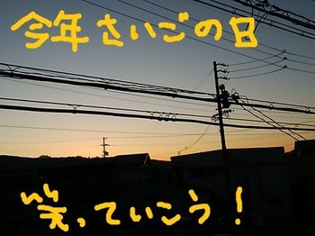 IMG_20171230_065305.jpg