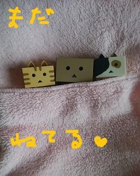 IMG_20180521_065716 (1).jpg